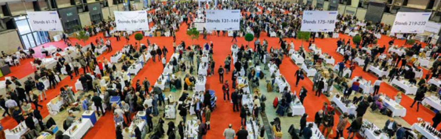 Calle and Simon attend Millésime Bio and Vinisud in the south of France