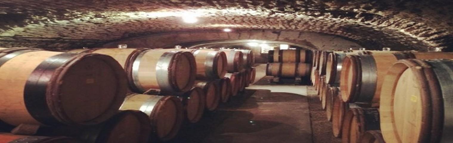 Emma visiting wine producers in Bourgogne