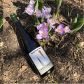 New Exclusive Listing at Systembolaget – Neumayer Erste Lage Riesling