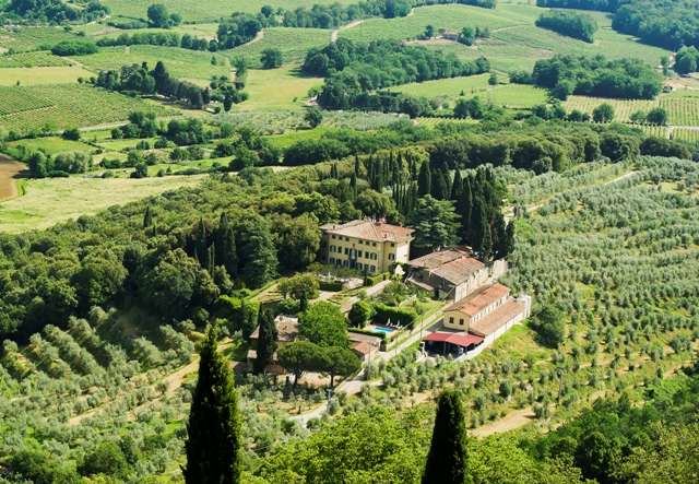 winery in Tuscany with beautiful vineyards, olive groves, and cypress trees